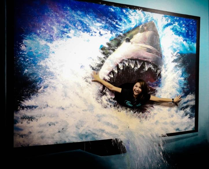 Funny Shark Interactive Art